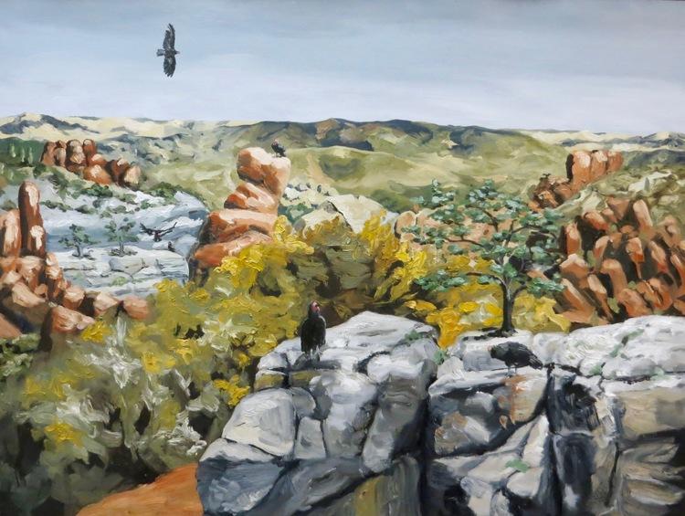 A Scarcity of 7 California Condors